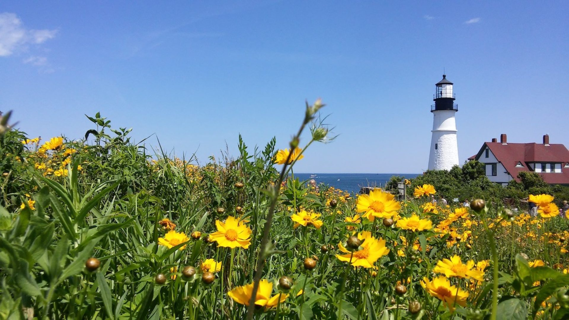 Maine Socially Responsible ESG Impact Investing